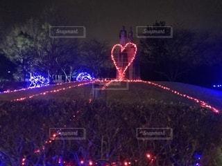 夜は信号が点灯するの写真・画像素材[2307609]