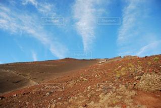 砂漠のクローズアップの写真・画像素材[2432867]