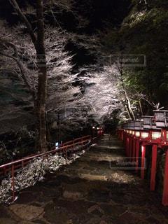 貴船神社雪景色の写真・画像素材[1705768]