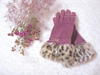 愛用の手袋の写真・画像素材[1799502]