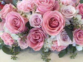 祝いの花の写真・画像素材[2121607]