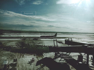 たくましい飛行機の写真・画像素材[1732085]
