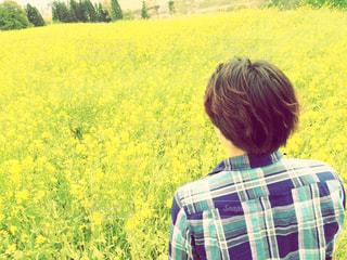男性,1人,20代,花,春,屋外,後ろ姿,チェック,黄色,菜の花,景色,男,人物,人,菜の花畑