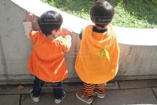 ハロウィンコスプレでかぼちゃを着たよの写真・画像素材[2660337]