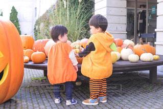 ハロウィンコスプレでかぼちゃを着たよの写真・画像素材[2660341]