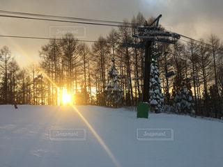 スキー場の夕焼けの写真・画像素材[1724816]