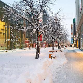 雪に覆われた街の写真・画像素材[1732357]