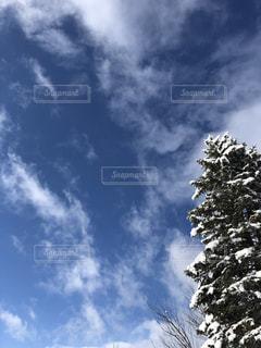 冬の空の写真・画像素材[1862136]