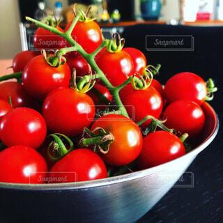 食べ物,トマト,野菜,ミニトマト,食品,食材,夏野菜,フレッシュ,ベジタブル