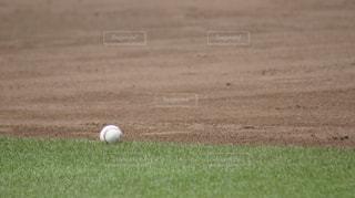 フィールド上のボールを投げて、野球選手の写真・画像素材[1219614]