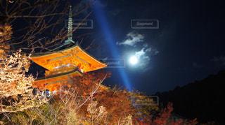 夜の清水寺の写真・画像素材[1665935]