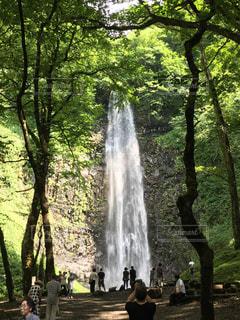 玉簾の滝の写真・画像素材[1045698]