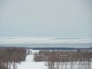 流氷の写真・画像素材[1690293]