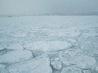 流氷観に来ました。の写真・画像素材[1690300]