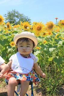 花,植物,ひまわり,黄色,女の子,ピクニック,黄,生後7ヶ月