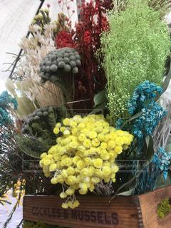 花,生け花,草木