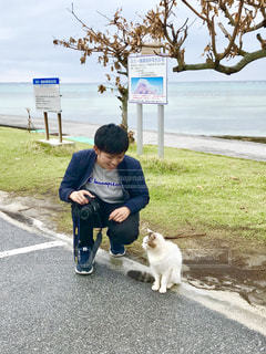 猫とカメラ男子の写真・画像素材[1832652]