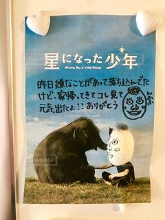 文字,メモ,メッセージ,手書き,感謝,日本語,メッセージカード,メモ書き