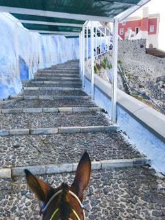 サントリーニ島の階段の写真・画像素材[2148545]