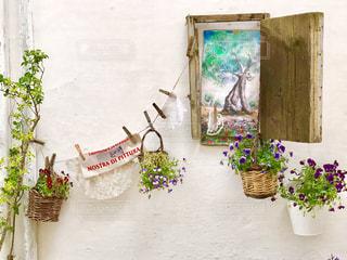 白い壁の花たちの写真・画像素材[2230460]