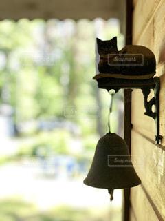 猫,建物,屋外,レトロ,壁,ドア,ベル,ナチュラル,フィルム,雰囲気,フィルム写真,フィルムフォト,ドアベル