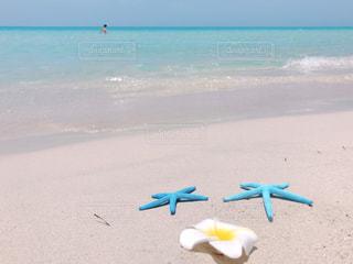 ビーチの写真・画像素材[2996760]
