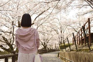 春コーデの写真・画像素材[3104625]