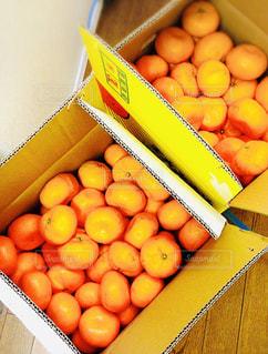 オレンジ ボックスの写真・画像素材[1769592]