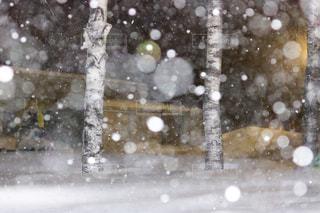雪に覆われた斜面の写真・画像素材[1732492]