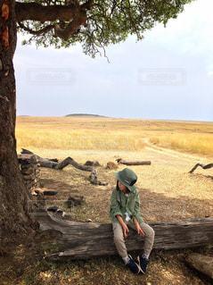 木,女の子,観光,海外旅行,アフリカ,ケニア,サバンナ,マサイマラ