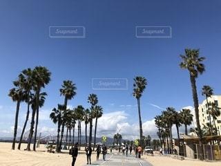 空,屋外,ビーチ,アメリカ,旅行,ロサンゼルス,サンタモニカ,ベニスビーチ,サンタモニカビーチ,ロス