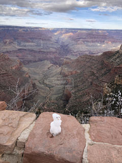アメリカ,雪だるま,海外旅行,グランドキャニオン
