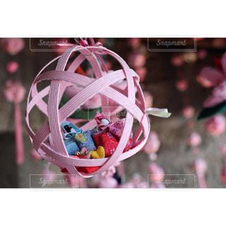 ピンク色の世界の写真・画像素材[1821510]