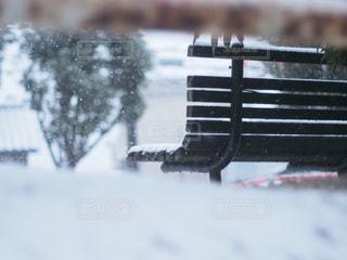 近くの雪の中でベンチの写真・画像素材[1733155]