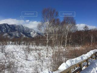 雪に覆われたフィールドの写真・画像素材[1732103]