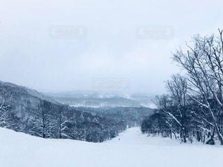 雪に覆われた斜面の写真・画像素材[1732436]
