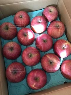 青リンゴの写真・画像素材[1763938]