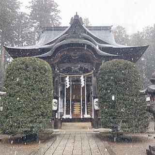 寒かった〜の写真・画像素材[1743222]