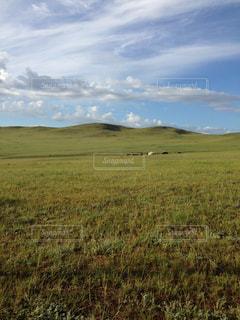 自然,空,大地,旅,モンゴル,地平線,海外旅行,ゲル