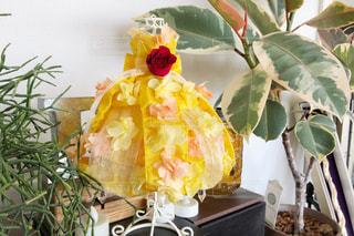 黄色,ドレス,家,幸せ,ベル,記念日,グリーン,色,ブリザードフラワー,yellow,幸せの黄色