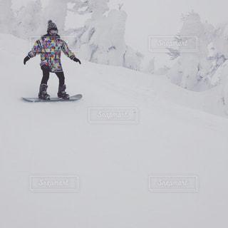 冬,スポーツ,雪,スノボ,樹氷,宮城蔵王えぼしリゾート