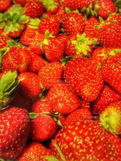 食べ物,赤,いちご,フルーツ,果物,ベリー,複数,イチゴ,インスタ映え