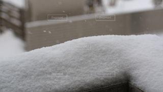 雪に覆われた建物の写真・画像素材[1735108]