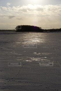 冬の足跡の写真・画像素材[1735981]