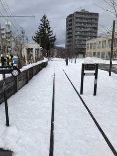 雪に覆われた道の写真・画像素材[1736101]