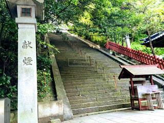 神社の石段の写真・画像素材[1761916]