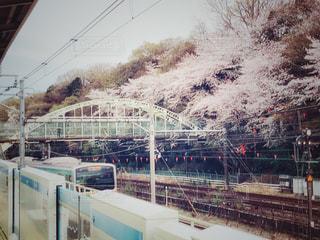 飛鳥山公園と京浜東北線と陸橋の写真・画像素材[1874513]