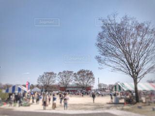 酪農祭りの写真・画像素材[2041394]