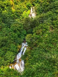 霧降の滝の写真・画像素材[2045003]