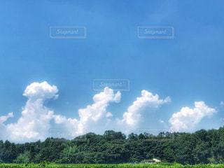 入道雲の写真・画像素材[2343662]